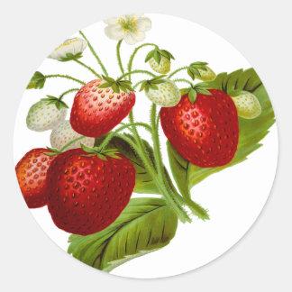 Hojas frondosas de la hoja de la fruta de la pegatina redonda