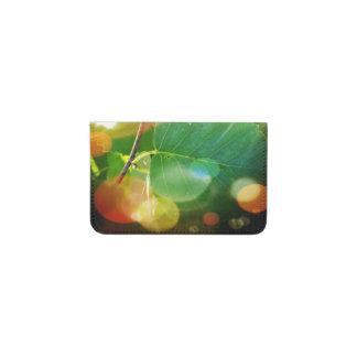 Hojas místicas en cartera de la tarjeta de