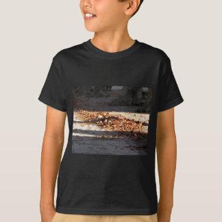 Hojas muertas que mienten en la tierra en la caída camiseta