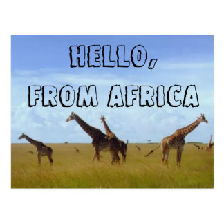 Hola con amor de la postal de África Hakuna Matata
