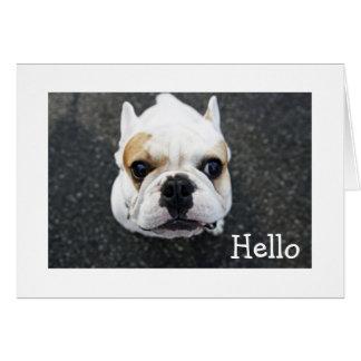 Hola tarjeta de nota del dogo - verso