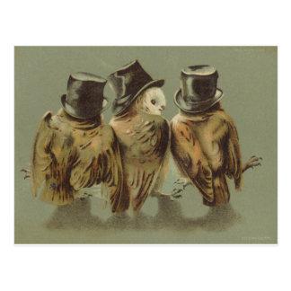 hombres del búho postales