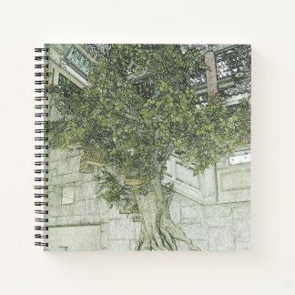Hong Kong retro: Banyan en el cuaderno de la pared