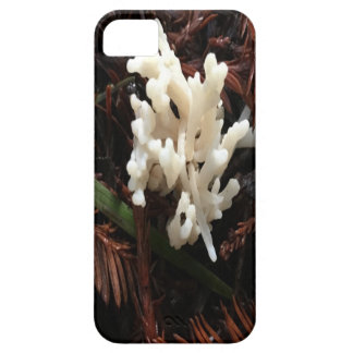 Hongo coralino de marfil funda para iPhone SE/5/5s