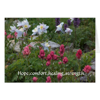 Hope.comfort… Tarjetón