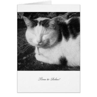 Hora de relajar el gato - tarjeta en blanco del