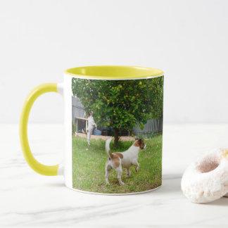 Hora del recreo de los fox terrier, taza de café
