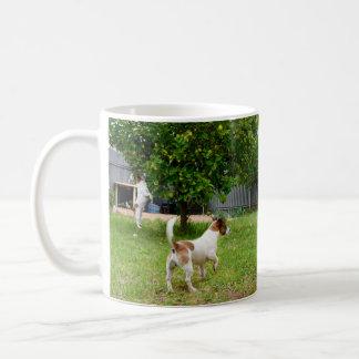 Hora del recreo de los fox terrier, taza del café