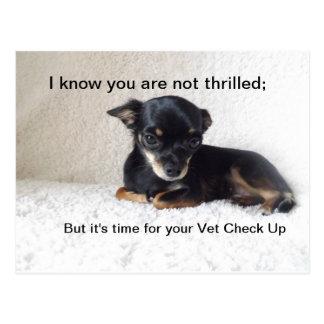 Hora para el control del veterinario para arriba postales