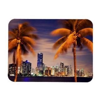 Horizonte de los E.E.U.U., la Florida, Miami en la Iman Flexible