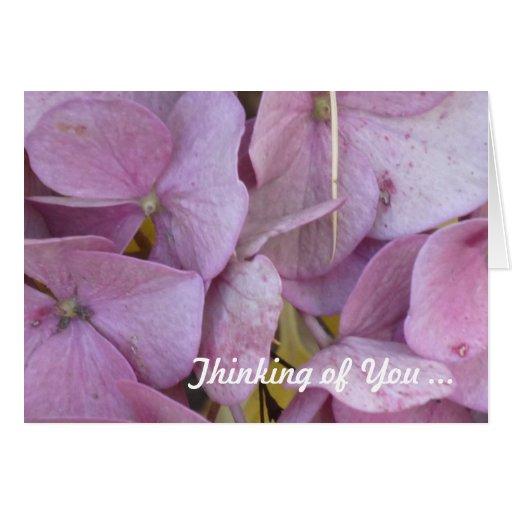 Hortensia Thinking of You - (pink) Card Felicitación