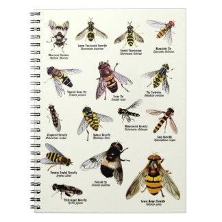 Hoverflies del Reino Unido - cuaderno