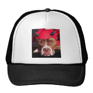 Hoyo del diablo gorras