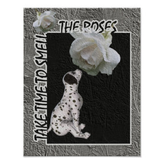 Huela el perrito dálmata de los rosas inspirado poster