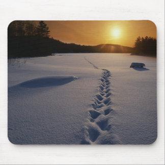 Huellas en el mousepad de la nieve alfombrillas de raton