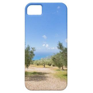 Huerta con los olivos en el mar en Grecia Funda Para iPhone SE/5/5s