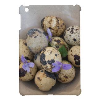 Huevos de codornices y flores 7533