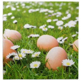 Huevos del pollo en hierba con las margaritas servilleta de tela