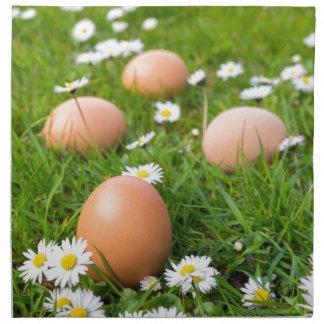 Huevos del pollo en hierba de la primavera con las servilleta de tela