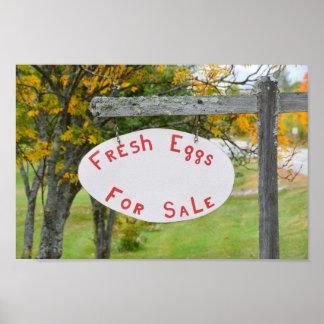 Huevos frescos para la venta en la muestra de póster