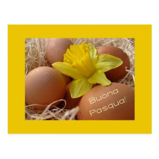 Huevos y saludo de pascua del narciso - italiano tarjeta postal