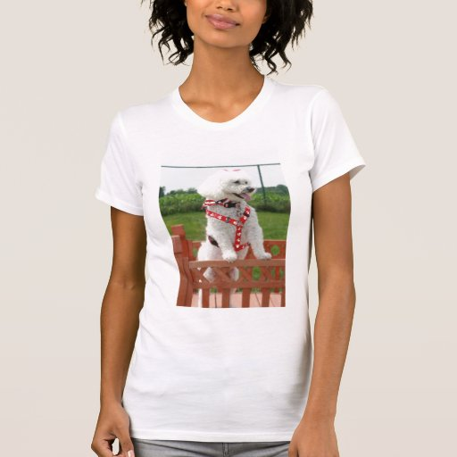 Huggie Camiseta