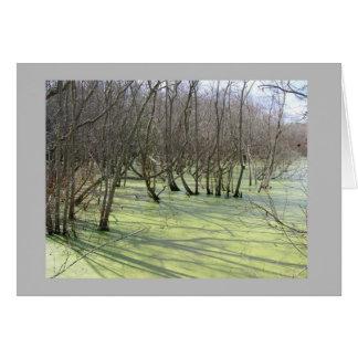 humedales verdes tarjeta de felicitación