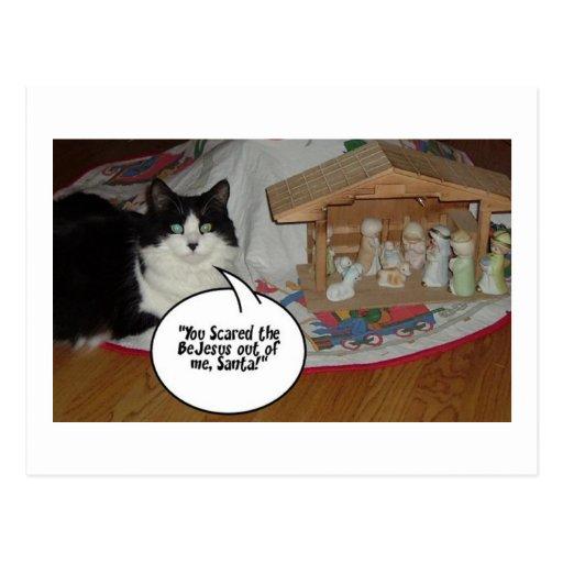 Humor blanco y negro del gato del navidad postales