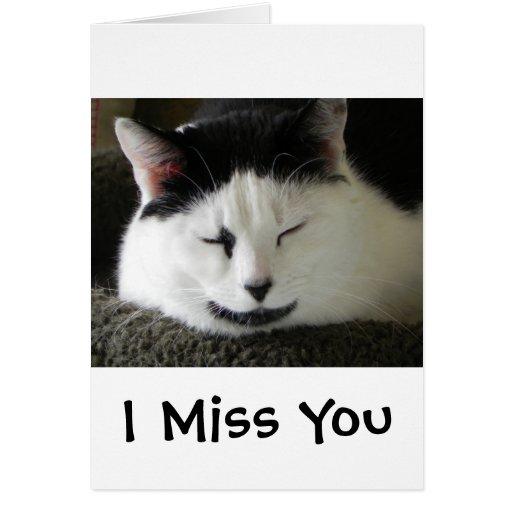 Humor blanco y negro del gato tarjetas