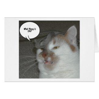 Humor de la despedida de soltero tarjeta de felicitación