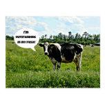 Humor de la vaca postales