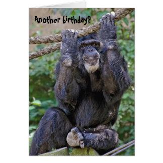 Humor del cumpleaños del chimpancé tarjeta de felicitación