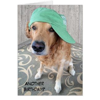 Humor del cumpleaños del golden retriever tarjeta de felicitación