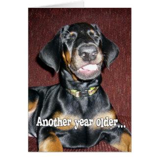 Humor del cumpleaños - perrito sonriente del Pinsc Tarjeta De Felicitación