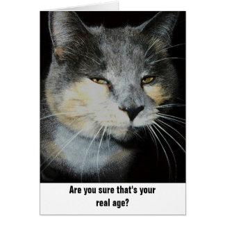 Humor del gato del cumpleaños tarjeton