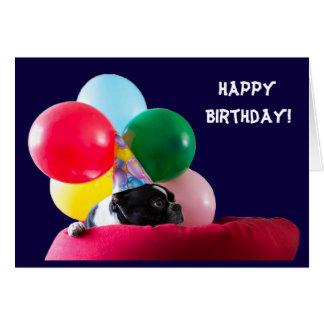 Humor del perro del feliz cumpleaños con los tarjeta de felicitación