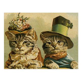 Humor del vintage, gatos del novio de la novia del postal