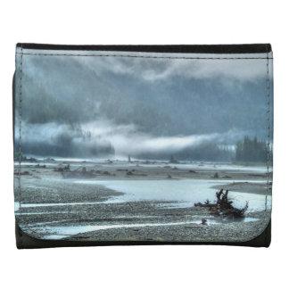Hyder, escena brumosa del río de Alaska y del bosq
