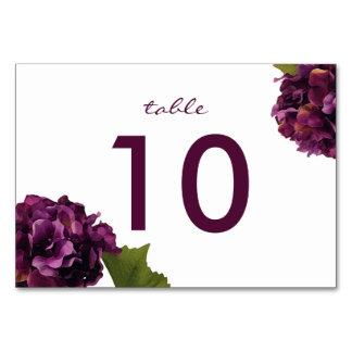 Hydrangea púrpura - tarjeta floral del número de