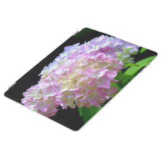 Hydrangeas del susurro de la mañana cubierta de iPad