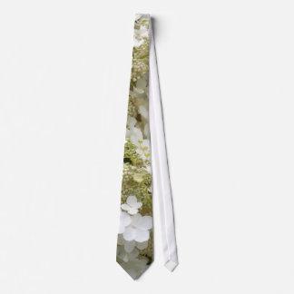 Hydrangeas del velo de novia corbatas