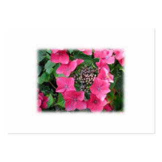 Hydrangeas. Flores rosadas. Blanco Tarjetas De Visita Grandes
