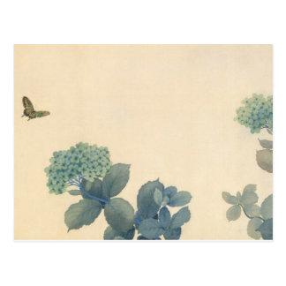 Hydrangeas por Shunso Postal