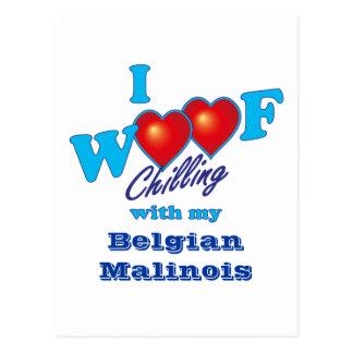 I belga Malinois del tejido Postal