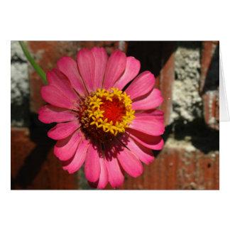 ¡I corazón usted! Foto de la flor Tarjeta De Felicitación