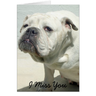 I tarjeta de felicitación de Srta. You Bulldog