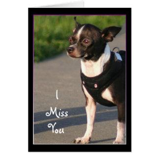 I tarjeta de felicitación de Srta. You Chihuahua