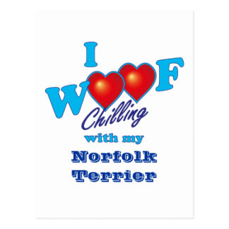 I tejido Norfolk Terrier Postal