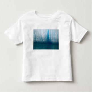 Icebergs de la visión en azul en el canal de camiseta de niño