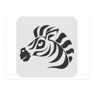 Icono de la cebra del safari tarjetas postales